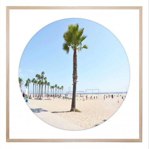 lone palm framed print united interiors palm springs